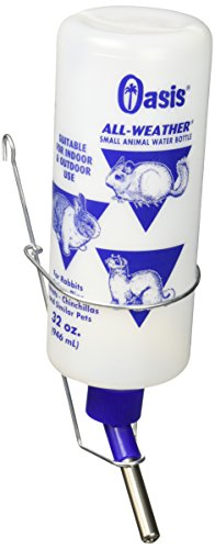 Kordon/Oasis (Novalek) SOA80850 Frosted All Weather Rabbit Water Bottle, 32-Ounce