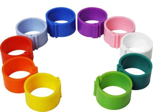 Dragon Poultry 10 x 16 mm Clip On Leg Rings for Chickens, Ducks, Hens, Poultry, Large Fowl (Mixed)