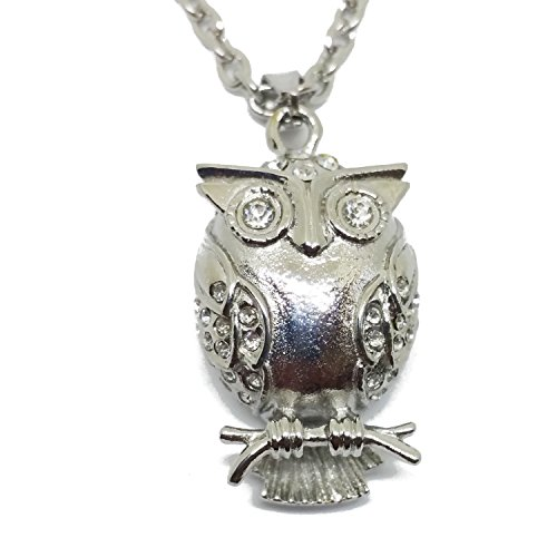 Owl with Clear CZ stone Cremation Urn Jewelry, Stainless Pendant Necklace for Loved Keepsake