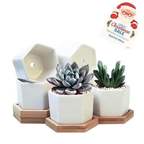 Succulent Planter,OAMCEG 2.75 inch Succulent Plant Pots,Set of