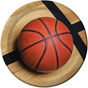 Sports Fanatic Basketball 9-inch