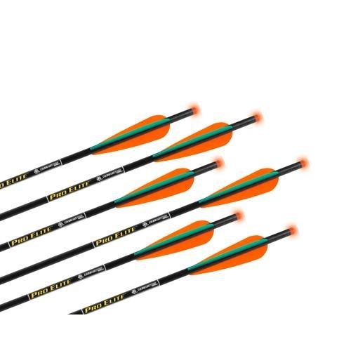 TenPoint Omni-Brite Lighted 20-Inch Pro Elite Carbon Arrows (6-Pack), Black