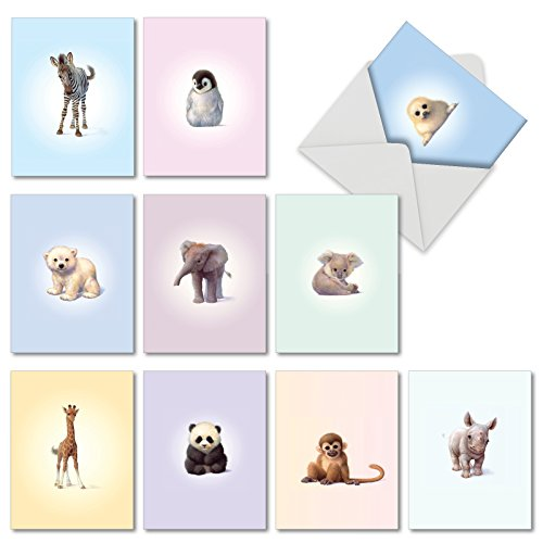 10 Assorted 'Zoo Babies' Blank Greeting Cards with Envelopes (4'' x 5 ¼'') - Cute & Adorable Animal Note Card Stationery Set for All Occasions, Kids - Panda Bear, Penguin, ()
