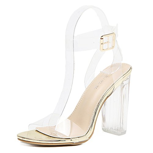 - Shoe'N Tale Women's Perspex Lucite Clear Ankle Strap Chunky Heel Pumps Open Peep Toe High Heeled Sandals (10 B(M) US, Gold)