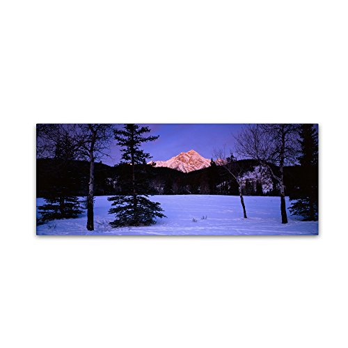 "picture of Trademark Fine Art ""Pyramid Mountain-Canada"" Artwork by David Evans, 16 by 47-Inch"