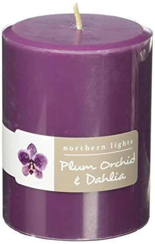 - Northern Lights Candles Plum Orchid & Dahlia Fragrance Palette Pillar Candle, 3 x 4