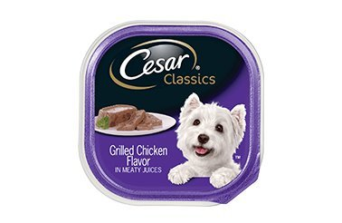 Cesar Wet Dog Food Classic Loaf in Sauce Grilled Chicken Flavor Multipack, (24) 3.5 oz. Trays