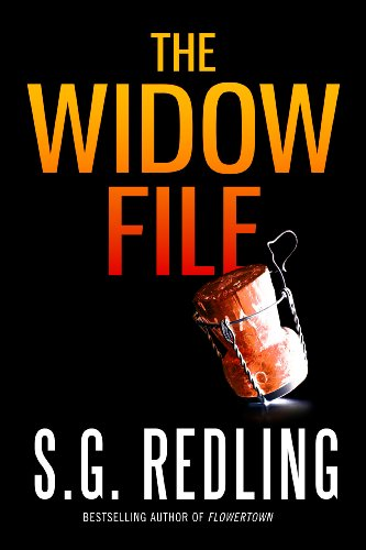 The Widow File (A Dani Britton Thriller) cover