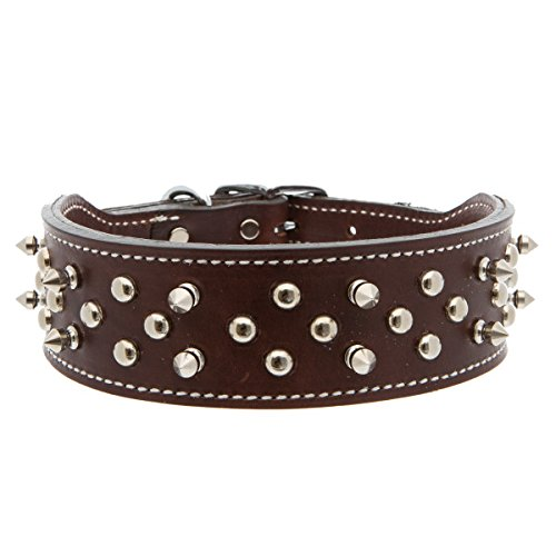 Top Paw Brown Double Spiked Leather Dog Collar~MEDIUM