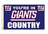 Fremont Die NFL New York Giants 3-by-5 Foot In Country Flag