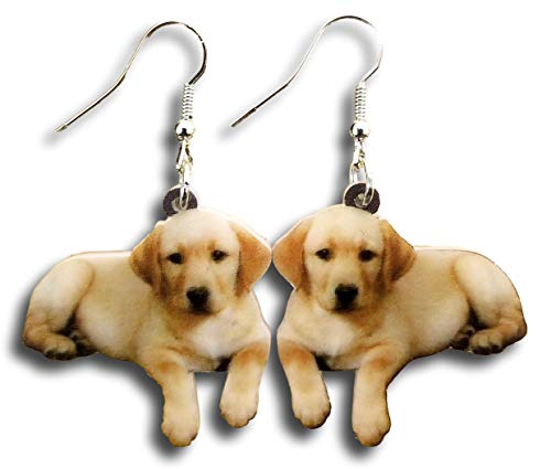 Pashal Golden Retriever Puppies Hard Acrylic Charm Earrings Set (Earrings)