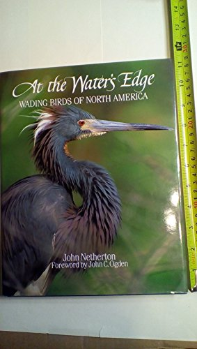 Water's Edge: Wading Birds of North America