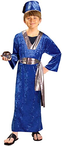 Forum Novelties Biblical Times Blue Wiseman Child Costume, Large