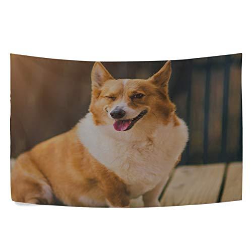 (RH Studio Tapestry Wall Hanging Dog Face Wink Thoroughbred Dorm Livingroom Bedroom Bedspread Sofa Cove Living Kids Girls Boys Room Dorm Deco (60x40inch))