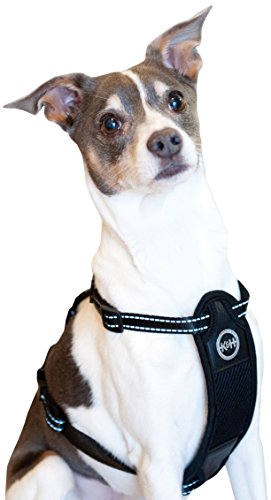 K&H Pet Products Travel Safety Pet Harness Medium Black 16''-24'' by K&H Pet Products