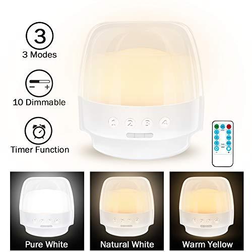 LED Night Light for Kids, Rechargeable Bedside Lamp for Nursery/Children/Baby, Timer Function,3 Color Settings & 10-Level Brightness (2019 Unique Design) ()