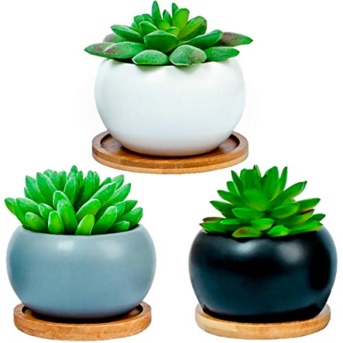 Succulent Cactus Plant Mini Pots with Bamboo Tray - Set of 3 Indoor Outdoor Flower, Herbs Cute Ceramic Planters for Home, Office Decoration. Mather