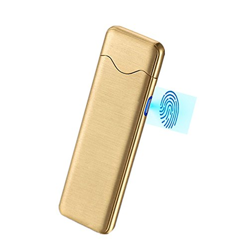 USB Rechargeable Dual Arc Plasma Lighter Windproof Electrothermal Flameless No Gas Arc Electric Lighter,USB Rechargeable Cable & Gift Box Included (Golden)