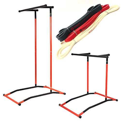 (GoBeast Pull Up Bar and Dip Stand with 3 Resistance Bands, Portable Power Tower Station with Workout Manual and Carry Bag)