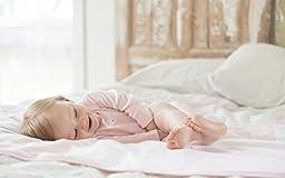 Burt\'s Bees Baby - Bold Stripe Fitted Crib Sheet, 100% Organic Crib Sheet for Standard Crib and Toddler Mattresses (Blueberry)