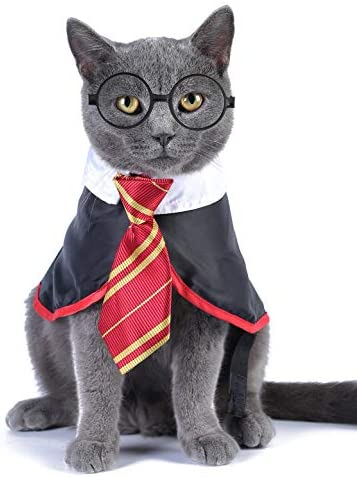 Impoosy Halloween Cat Costume Small Dog Wizard Pet Clothes Cute Apparel Puppy Shirts with Glasses 15