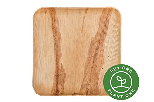 "9"" Square Palm Leaf Plates - Pack of 25 - Disposable, Compostable, Natural, Tree Free, Sustainable, Eco-Friendly - Fancy Rustic Party Dinnerware and Utensils Like Wood, Bamboo"