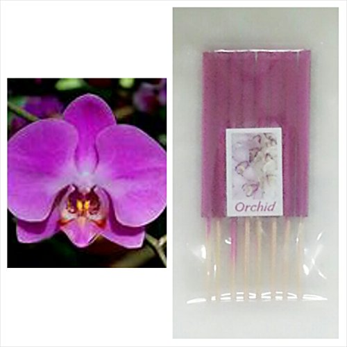 Orchid Scents 80 Sticks Mini Incense Sticks Thai Spaアロマセラピーホームのハーブ&香料、長さ3