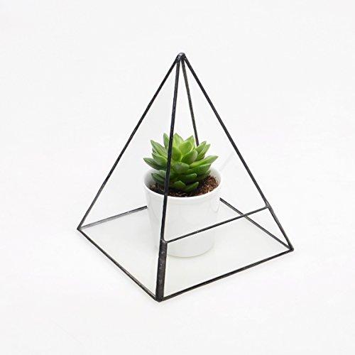 Geometric Modern Pyramid Tabletop Glass Succulent Plant Terrarium Box, Air Plant & Cacti Holder Case