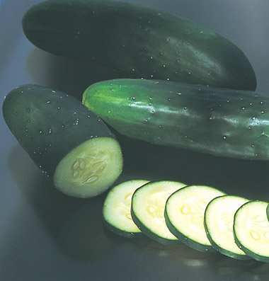 David's Garden Seeds Cucumber Slicing Olympian (Green) 50 Hybrid Seeds