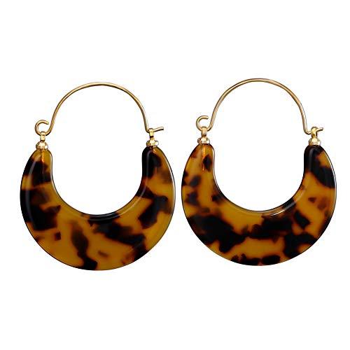 LILIE&WHITE Tortoise Hoop Earrings Acrylic Earrings for Women Girls Geometric Circle Resin Drop Dangle Earrings Fan Hoop Earring