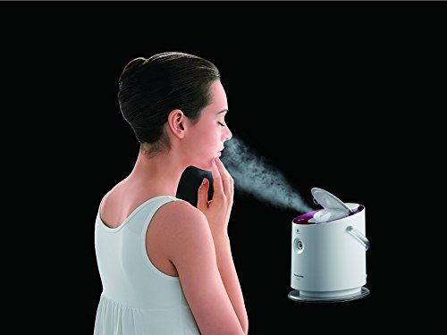 Panasonic Nanoe Nano Care EH-SA60-N Gold Ion 2 Way Steamer (Japan Import)