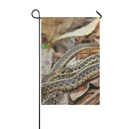 Zhiz Zy   Yard And Home Outdoor Decor  All Weather Polyester Double Sided Garter Snake Garden Flag  12 X 18 Inches