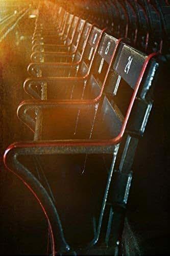 Enjoyable Amazon Com Boston Red Sox Blue Seats Fenway Park Print Dailytribune Chair Design For Home Dailytribuneorg