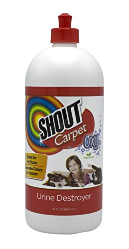 Shout Carpet Turbo Oxy Urine Destroyer | Carpet Cleaner Completely Removes Tough Urine Stains & Prevents Remarking | 32 Ounces, Pack of 2