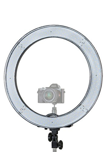 Prismatic Led Halo Ring Light With 6 Light Stand For Photo Video Lighting