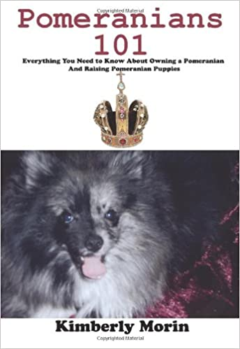 Pomeranians 101 Everything You Need To Know About Owning A