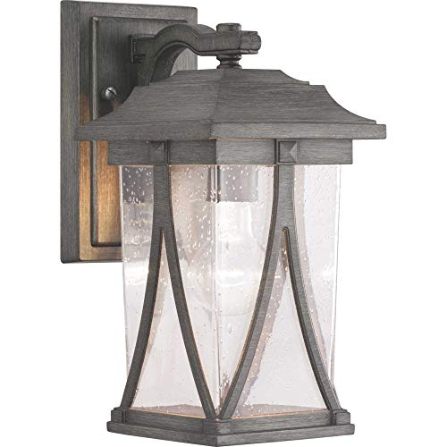 Progress Lighting P560113-103 Abbott Collection One-Light Small Wall Lantern, Antique Pewter ()