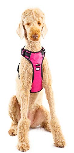 Black Rhino - The Comfort Dog Harness with Mesh Padded Vest for Small - Large Breeds | Adjustable | Reflective | 2 Leash Attachments on Chest & Back - Neoprene Padded Training Handle (Medium, Pink/Bl)