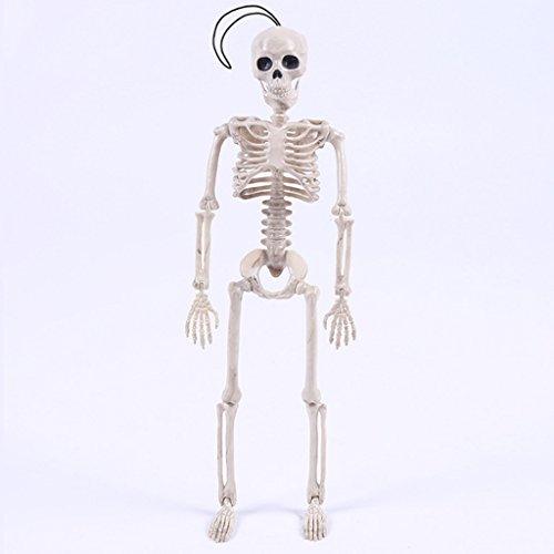 Kofun Skull Body Figure Toy, Novelty Cool Skeleton Mister Bride Human Model Skull Body Figure Toy Halloween Ideal Christmas Birthday Model for Kids Gift for Kids -