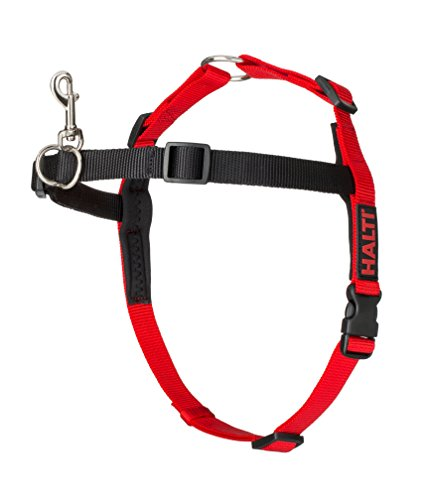 The Company of Animals - HALTI Training Harness - Durable and Adjustable - Comfortable Padded fit - Medium - Black & Red