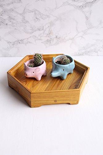 g Coffee Tea Tray Decorative Geometric Wood Honeycomb Food Platter Ottoman Centerpiece ()