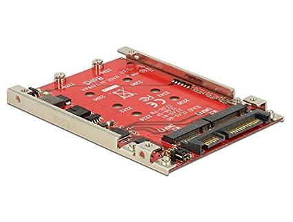 DeLOCK 62698 Tarjeta y Adaptador de Interfaz Interno M.2 ...