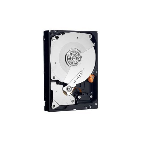 Western Digital 500 GB Caviar Black SATA 3 Gb/s 7200 RPM 32 MB Cache Bulk/OEM Desktop Hard Drive - WD5001AALS -