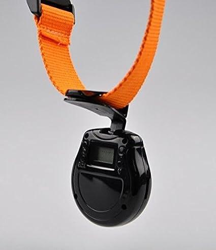 Yonis-Cámara para collar de perro gato Usb memoria, diseño de cámara de fotos: Amazon.es: Electrónica