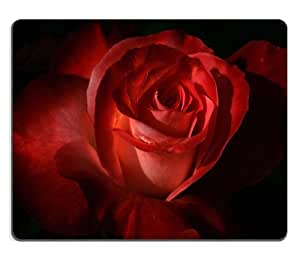 Beautiful Red Rose fresh vibrant color beauty nature antique Mouse Pads Customized Made to Order Support Ready 9 7/8 Inch (250mm) X 7 7/8 Inch (200mm) X 1/16 Inch (2mm) High Quality Eco Friendly Cloth with Neoprene Rubber Liil Mouse Pad Desktop Mousepad Laptop Mousepads Comfortable Computer Mouse Mat Cute Gaming Mouse_pad