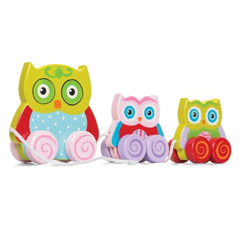 Tobar Pull Along Owl Family