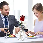 24k-Gold-Rose-Gold-Plated-Rose-a-Selection-of-gifts-for-Anniversary-Marriage-Valentines-Day-Xmas