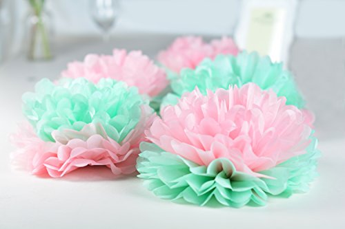 paper jazz Dual Color Pompom Flower Lantern Paper Pinwheel Fan Party Decoration kit for Wedding Birthday Bridal Shower Baby Shower Home Store Decoration (Mint Pink)