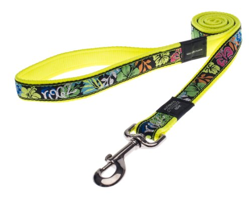 ROGZ Stylish Fancy Dress Armed Response Fixed Long Dog Lead, X-Large, Day-Glo Floral Design