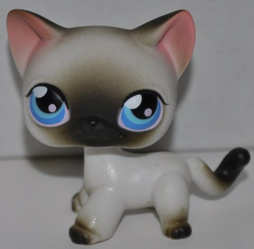Siamese Kitten #5 (Short hair, 4 Paws, White, Brown Tips) 2005 Littlest Pet Shop (Retired) Collector Toy - LPS Collectible Replacement Single Figure - Loose (OOP Out of Package & Print) ()